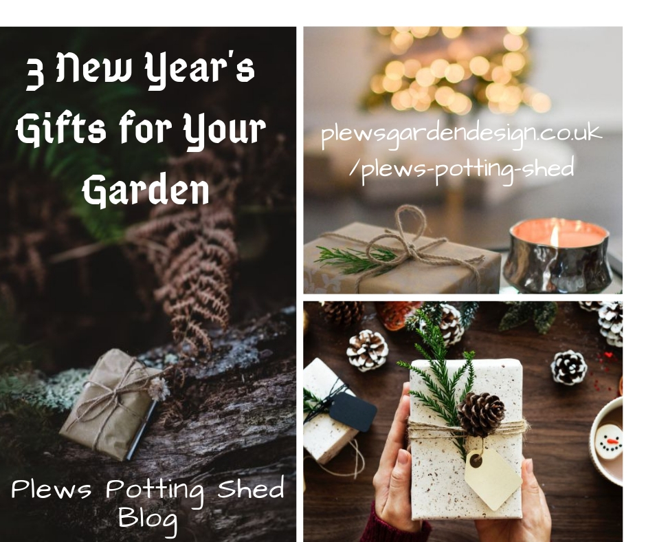 3 gifts for your garden, new years resolutions, epiphany, twelfth night, garden planning, gardening lessons