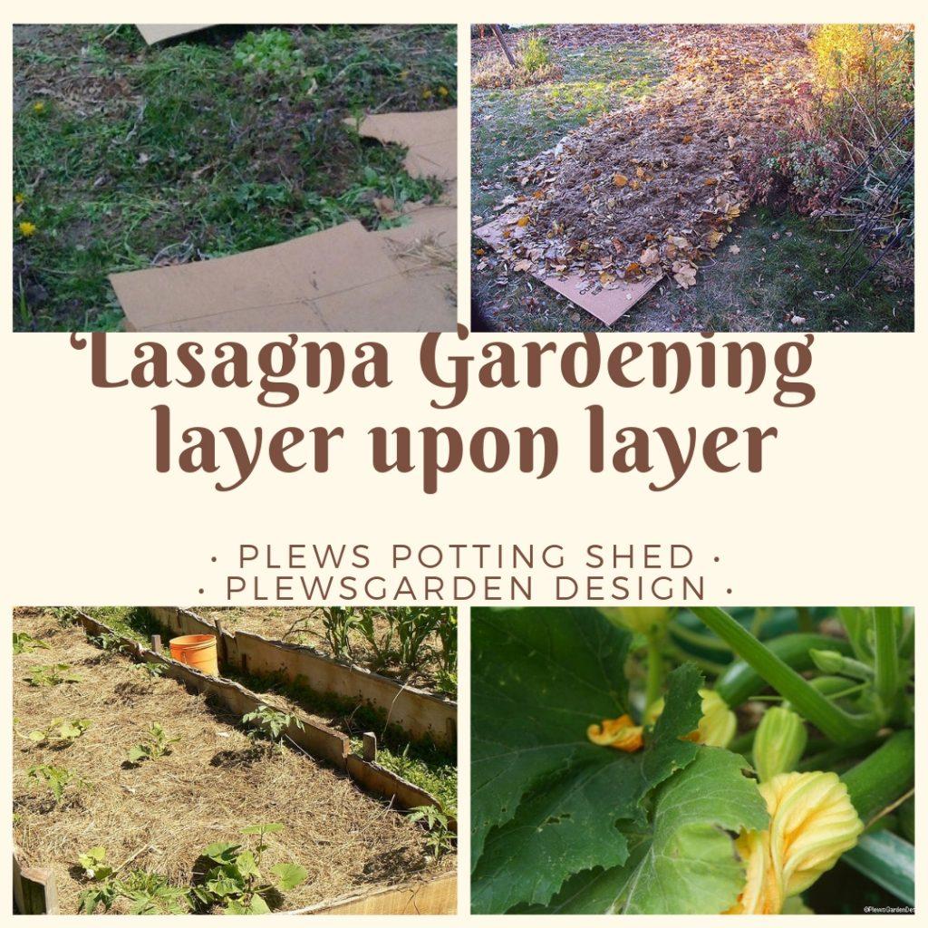 Lasagna Gardening – Growing Methods for Gardeners